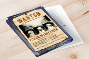 "Postkarte ""Wanted – Fischbrötchendieb"""